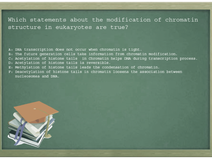 Which statements about the modification of chromatin structure in eukaryotes are true?