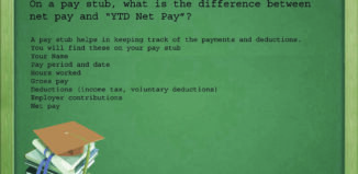 YTD Net Pay
